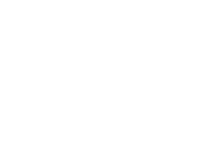 Autofreund
